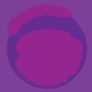 Denver Immersive Opera